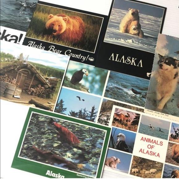 ALASKA Postcards, 8PC Vintage Native Animals